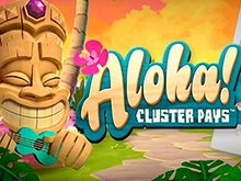 Азартный виртуальный отдых с Алоха автоматом